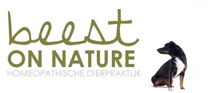 Dierpraktijk-Beest.nl | Natuurgeneeskunde voor dieren