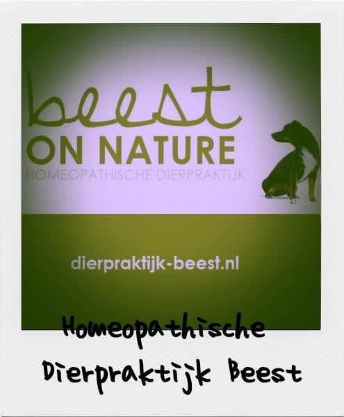 Homeopathische Dierpraktijk Beest