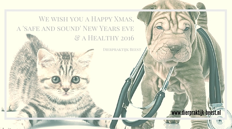 ISAP newletter dec 2015 Fireworks Dog Anxiety