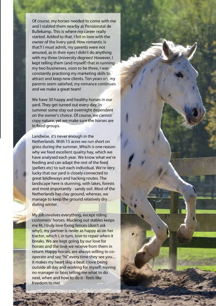 Horse bioresonance for animals dierpraktijk beest