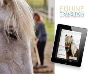 the equine transition interview marloes kruiper dierpraktijk beest